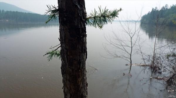 Чара. Наводнение. Смог