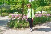 А тюльпаны уже отцветают