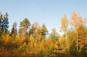 Начинается осень