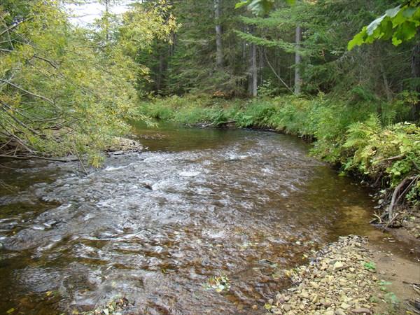 Перекат на реке Кумля