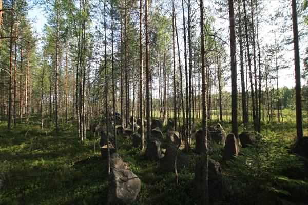 Финские противотанковые заграждения