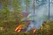 Лесной пожар в окрестностях Сусумана