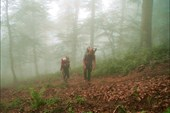 заброска в туман