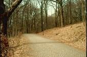 Дорога к замку Шернборна