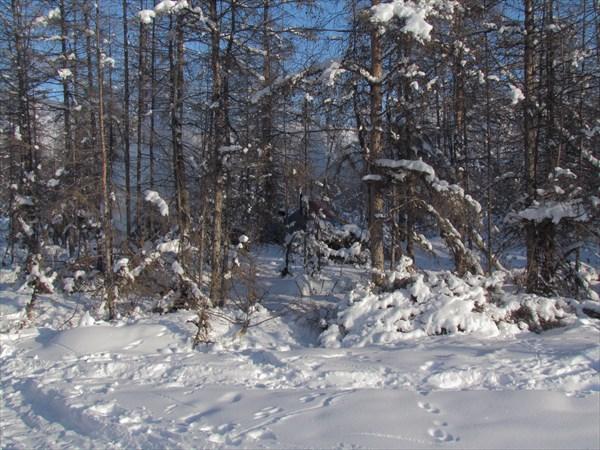 038_Черского