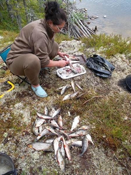 Немного поймали рыбки