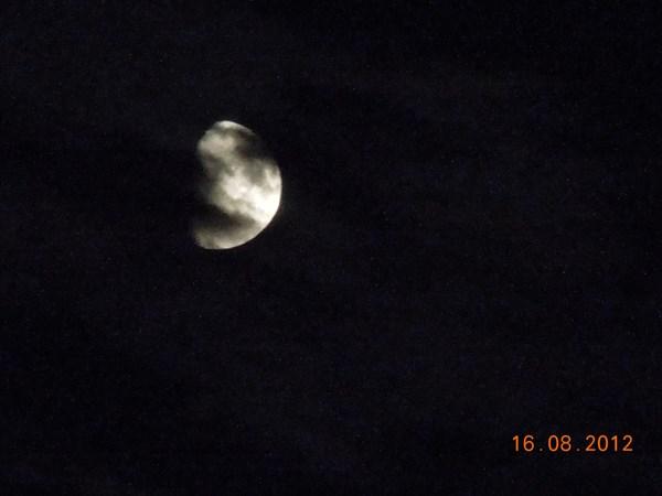 Ночь. Луна. Тишина...