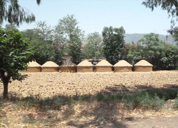 Емкости для хранения урожая