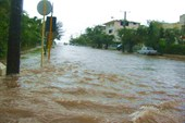 Последствие дождя