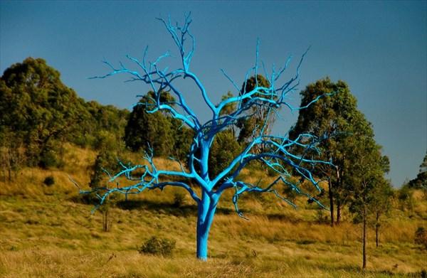 Bluetree6