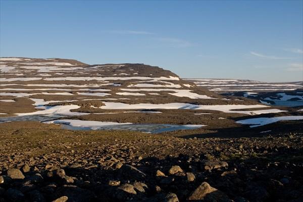 Немного Арктики