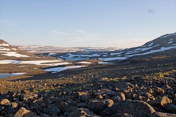 Много Арктики