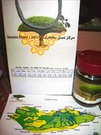 Мед mix (бутылочные,драконовые деревья, алоэ)