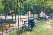 По соседству с кемпингом в Криницах