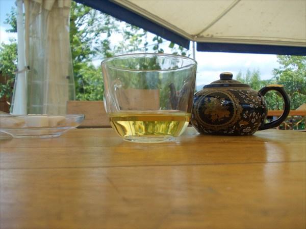 Самый северный чай в мире