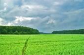 « У природы нет плохой погоды…»