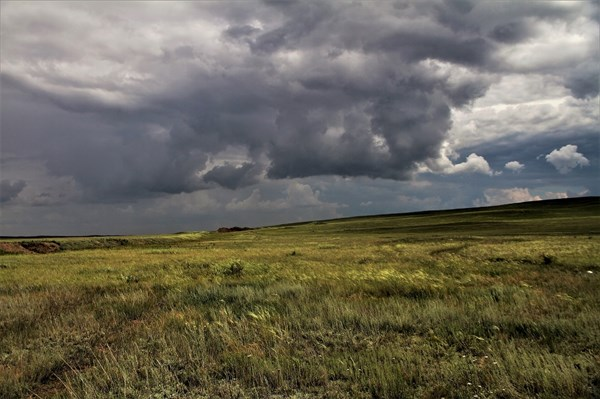 на фото: В степи между Коянды и Каратомаром