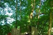 Разрушенный дольмен в Гузерипле