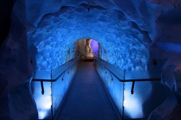 Ледовая галерея в музее подводного мира и Антарктики