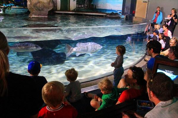 Дети и рыбы