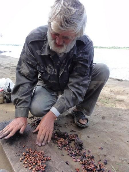 Добывание орешков.