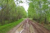 Дорога Большая Тава - Малая Тава