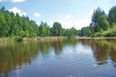 Обычный вид любимой реки