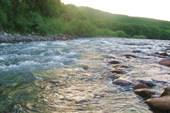 Редкая шиверочка реки Киевки...