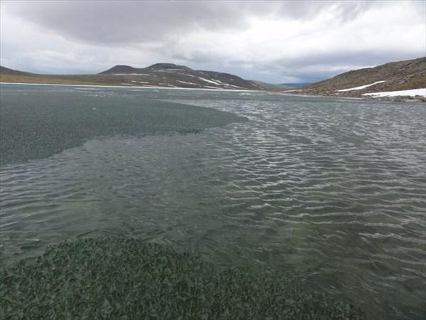 Озеро Колокольня в конце июня