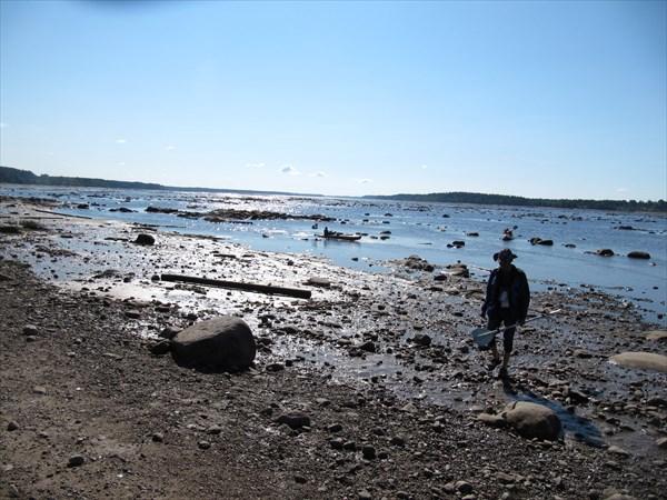 Река Онега у города Онега в отлив