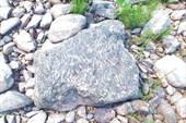 Окаменевшие отложения времён зарождения жизни на Земле