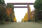 Тории храма Ясакуни