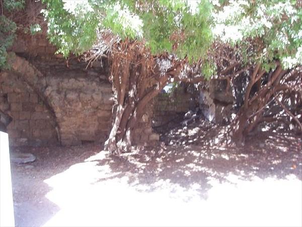 023-Яффа-развалины