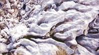 Структура камня на Фиште
