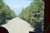 530 км по бездорожью