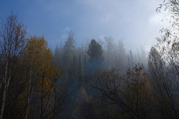 Утро. Туман. Красота!