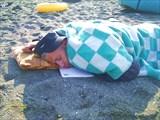Кореш устал