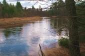 Течет река кокшага