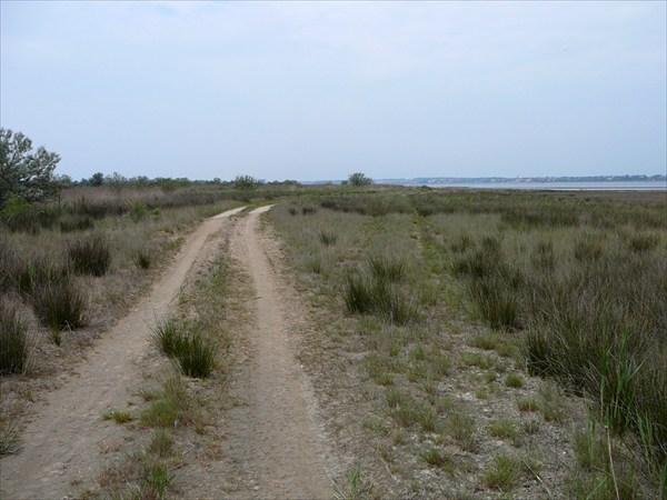 Дорога по Витязевской косе. Ближе к концу