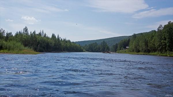 Тагул ниже ручья Грядинский