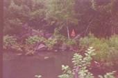 Затеренное озеро