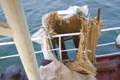 На борту работает `Тайский` туалет