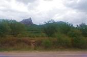 Гора Святая