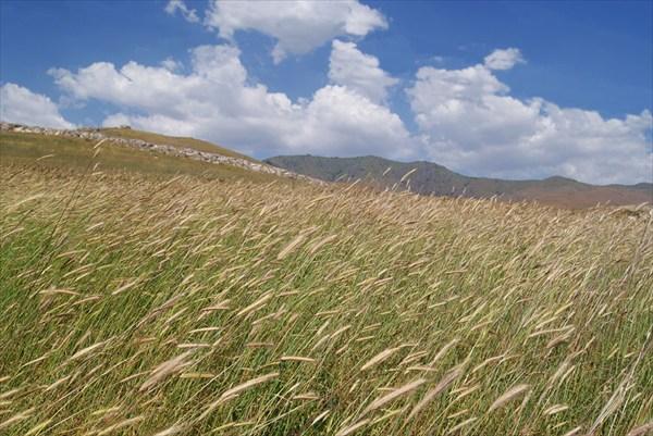 Юго-западные склоны Чаткальского хребта