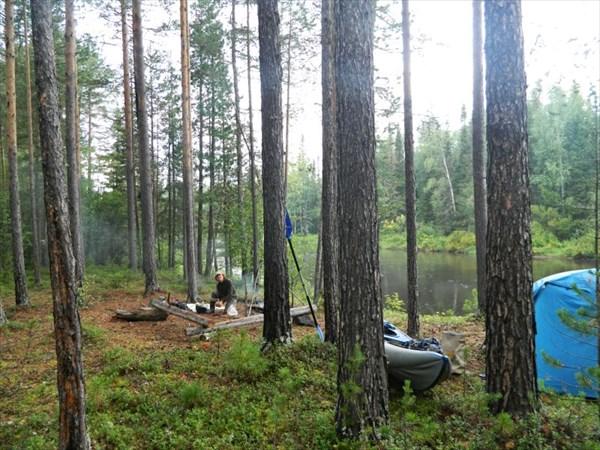 В лесу на Лозьве.