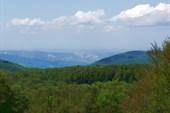 Вид с Лысой горы