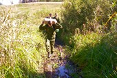 Преодоление болота по жердям