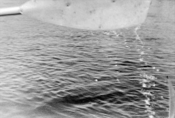 IMG_1920