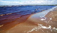 Море11