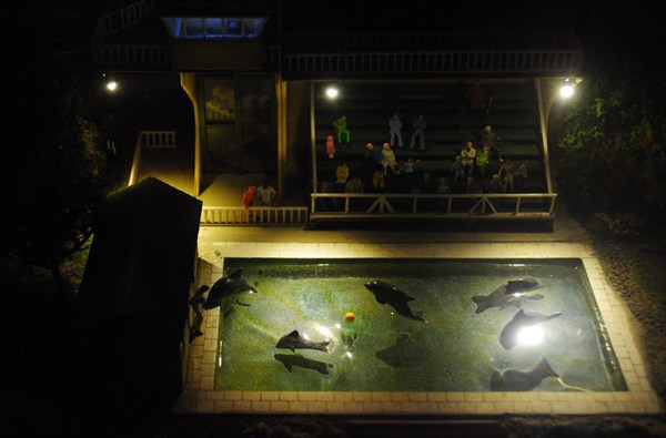 Дельфинарий ночью